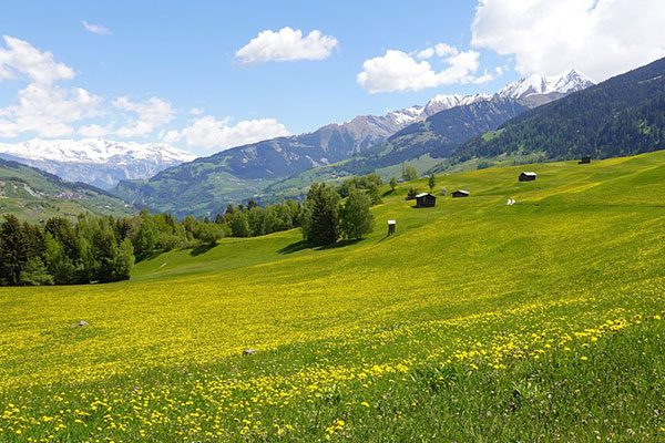 康定红海草原