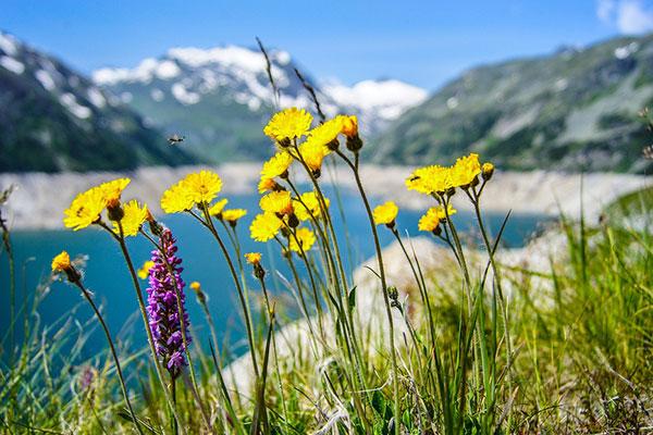 端午节四川租车旅游去哪儿?推荐人少景美的康巴藏区
