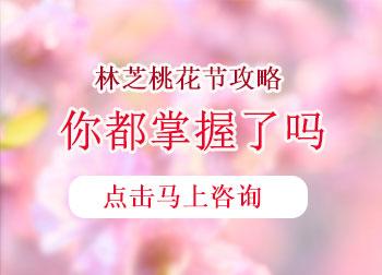 2021西藏林芝桃花节自驾游攻略